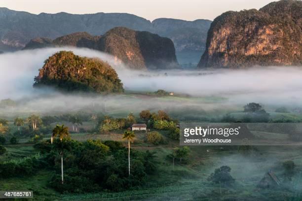 fog over rural valley, vinales, pinar del rio, cuba - valle de vinales stock-fotos und bilder