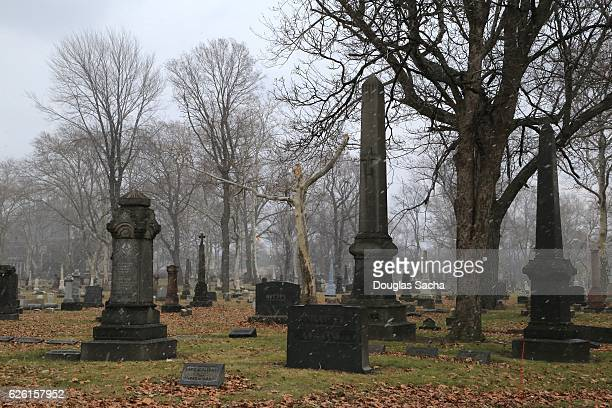 fog over the dark cemetery - empty tomb stock pictures, royalty-free photos & images