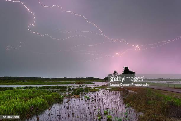 fogg dam lightning - オーストラリア北部準州 ストックフォトと画像