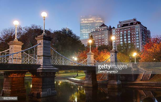 foggy autumn morning in boston - boston common stock pictures, royalty-free photos & images