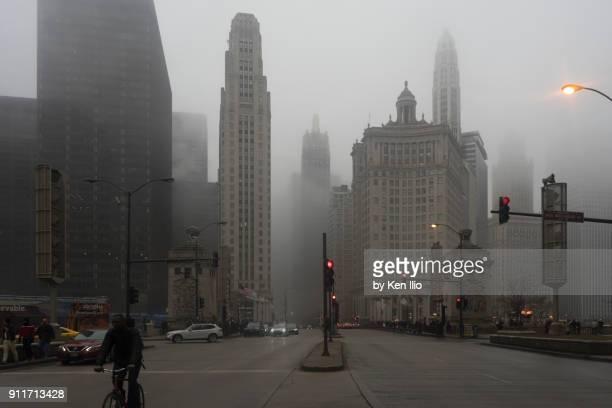 foggy avenue - ken ilio stock photos and pictures