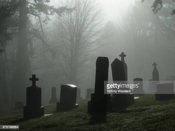 foggy cemetery - cemetery stock pictures, royalty-free photos & images
