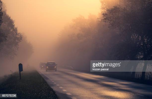 foggy country road in france at dawn