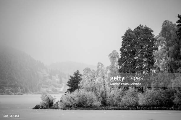 foggy day - winter sports event stock pictures, royalty-free photos & images