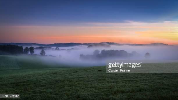 foggy field at sunrise, nebel, sauerland, germany - ländliches motiv stock-fotos und bilder