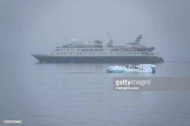 Foggy iceberg penguins National Geographic Explorer ship Gerlache Strait Antarctica
