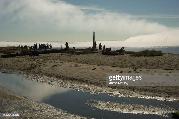 Foggy KVI Beach