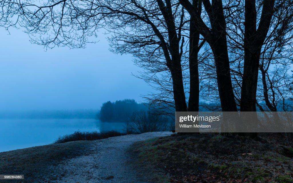 Foggy Lake : Stockfoto