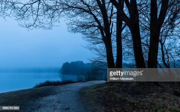 foggy lake - william mevissen bildbanksfoton och bilder