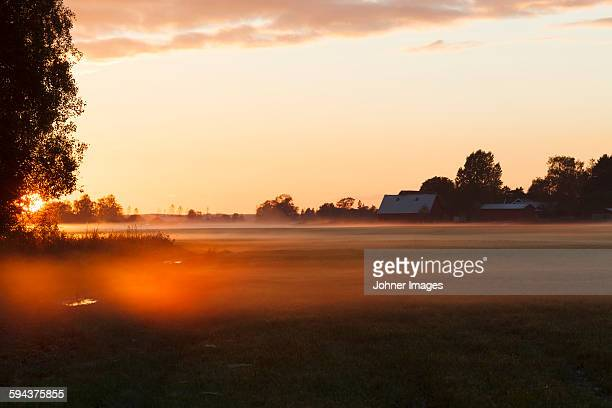foggy landscape at sunset - västra götalands län stockfoto's en -beelden