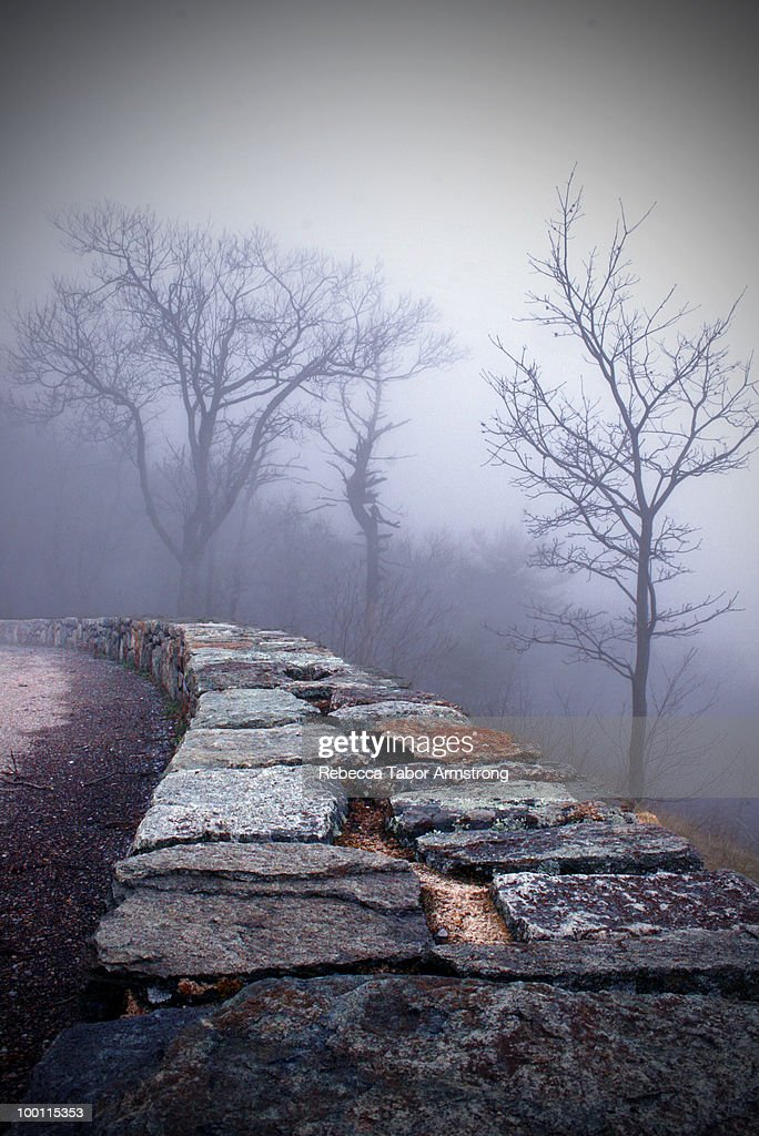 Foggy morning along Skyline Drive. : Stock-Foto