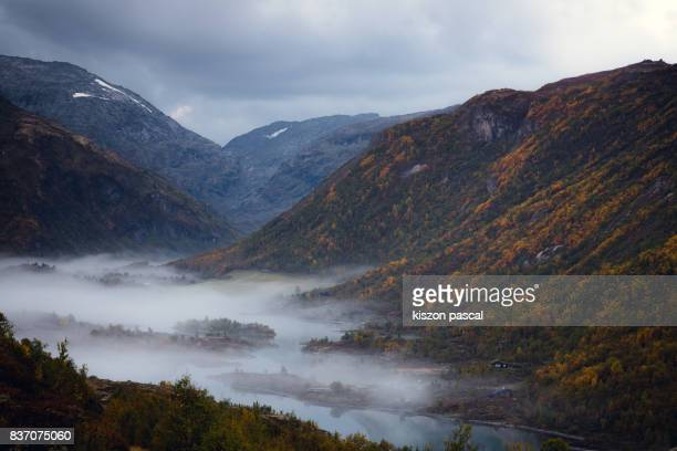 foggy morning in central Norway in autumn