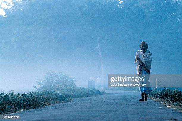 foggy morning - winter bangladesh stock photos and pictures