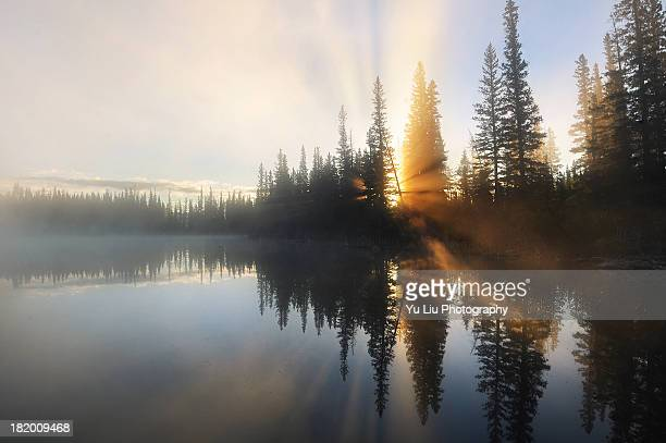 foggy morning reflections - bow valley stock pictures, royalty-free photos & images