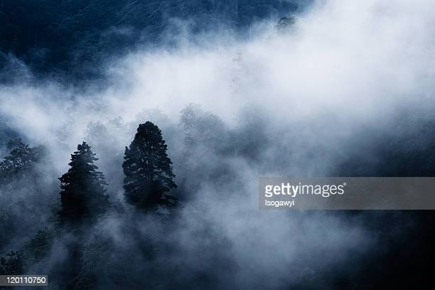 foggy mountain - isogawyi stock pictures, royalty-free photos & images