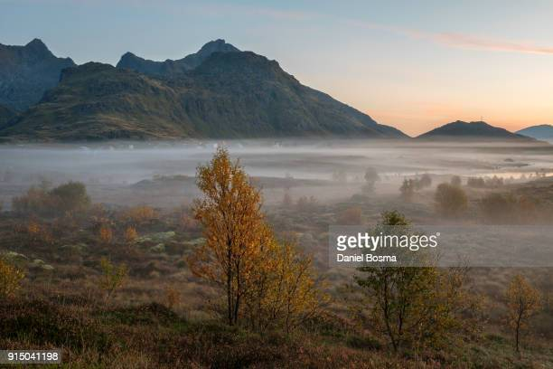 foggy mountainous landscape during autumn on lofoten islands in norway - ノースランド地方 ストックフォトと画像