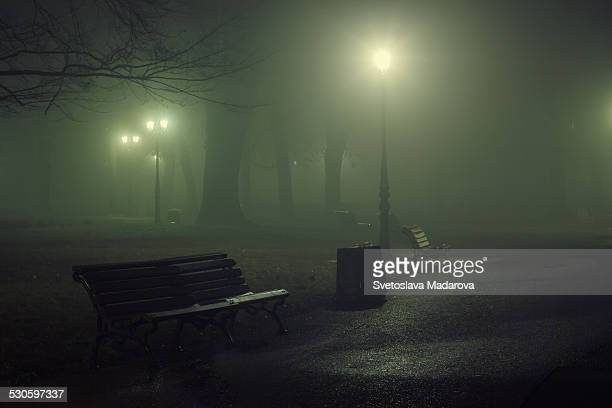 Foggy night in park
