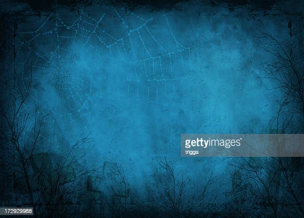 foggy night view, of bare branches covered in spider webs - happy halloween stock photos and pictures
