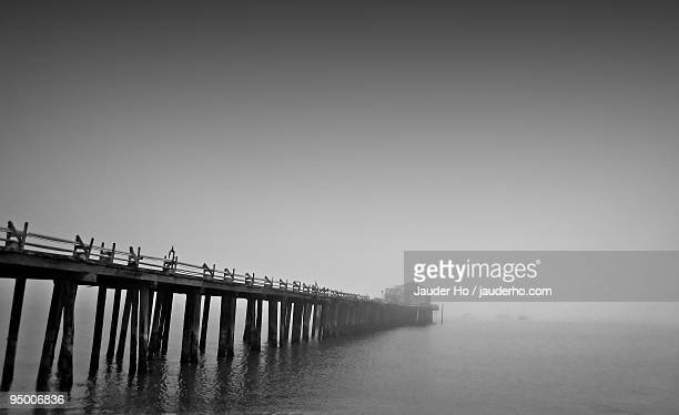 Foggy Pillar Point Harbor
