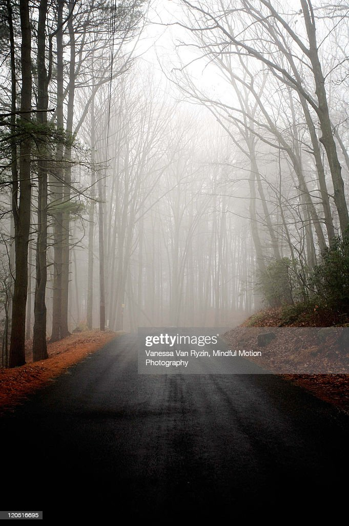 Foggy road : Stock Photo