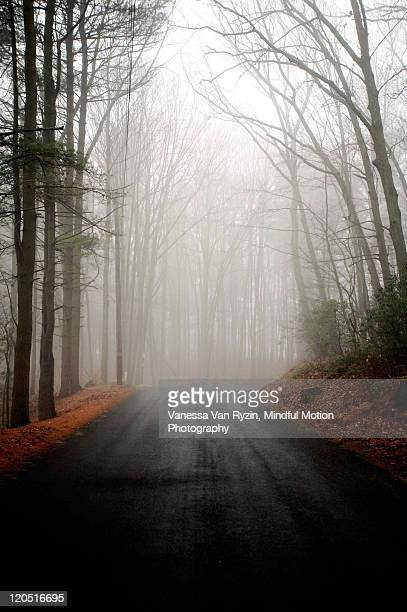 foggy road - vanessa van ryzin stock photos and pictures