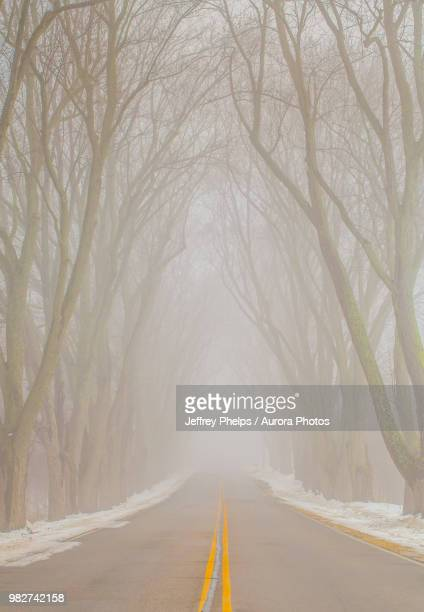 foggy roadway, saukville, wisconsin, usa - staadts,_wisconsin stock pictures, royalty-free photos & images