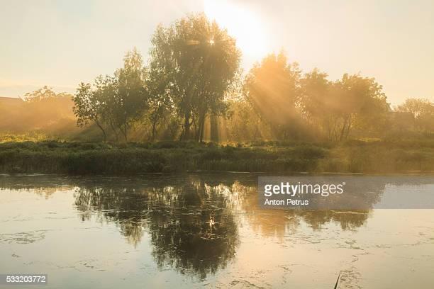 Foggy sunrise over the lake