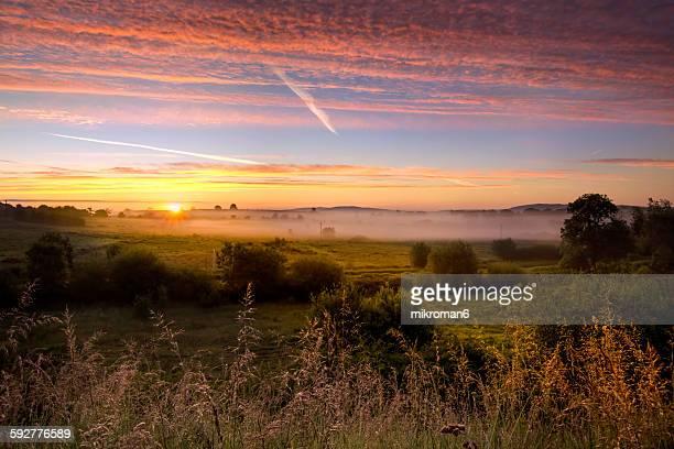 Foggy sunrise over Tipperary fields