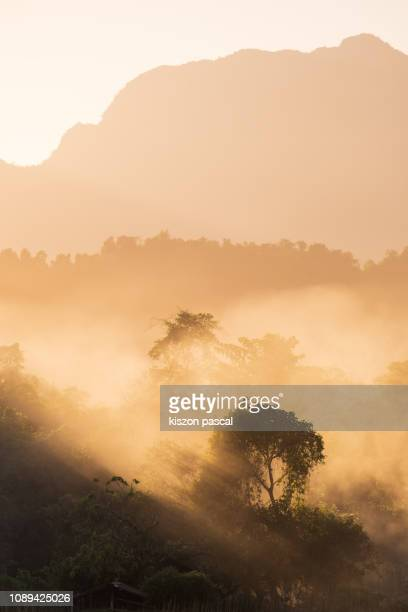 foggy sunset in fields of Laos . nature landscape .