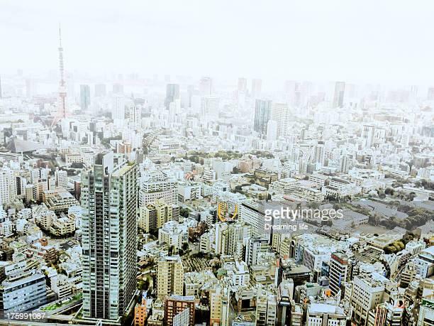 Foggy Tokyo view