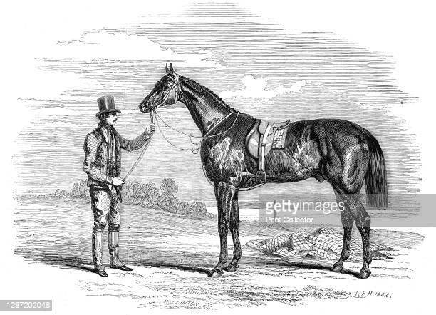 Foigh-a-Ballagh, the winner of the Great St. Leger and Grand Duke Michael Stakes, drawn by Herring, 1844. The racehorse Faugh-a-Ballagh was the first...