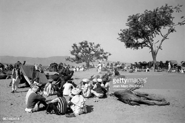 Foire aux chameaux le 28 novembre 1982 à Pushkar au Rajasthan Inde
