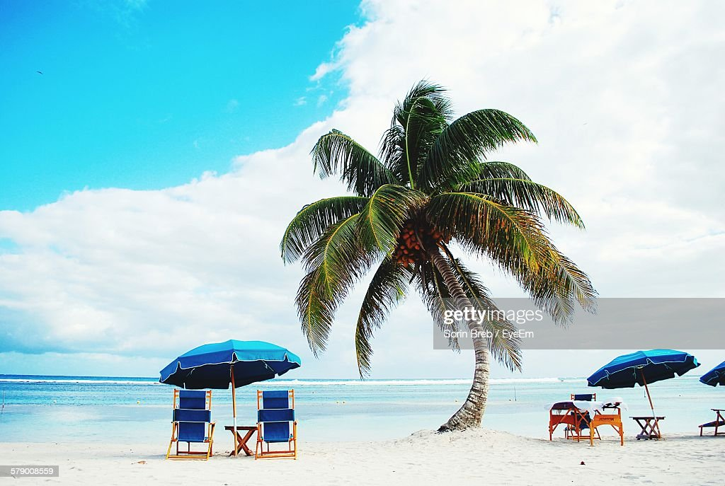 Folding Chair And Beach Umbrella By Palm Tree On S Against Sky Stock Photo