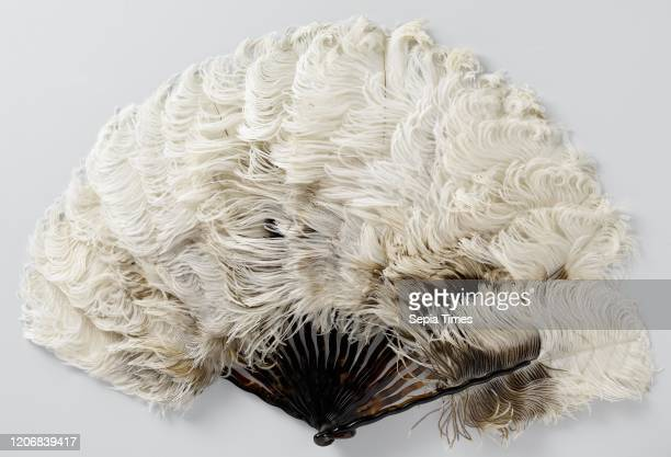 Folding fan of whitebrown ostrich feathers on a frame of narrow twisted plastic legs with turtle motif curved legs of plastic with turtle pattern The...