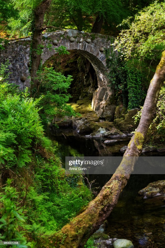Foley's Bridge across Shimna River in Tollymore Forest Park, Northern Ireland : Stockfoto
