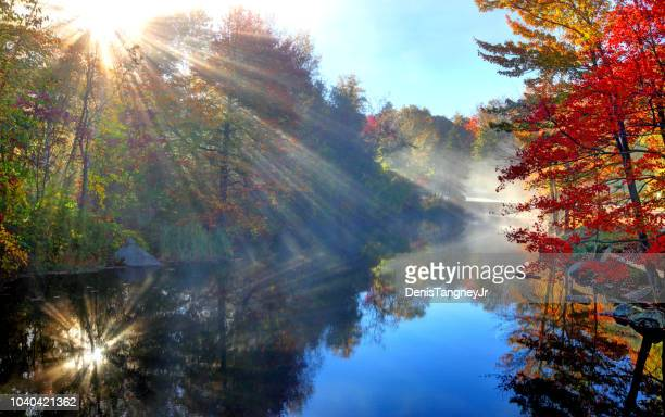 foliage along the sugar river in sunapee new hampshire - four seasons stock pictures, royalty-free photos & images