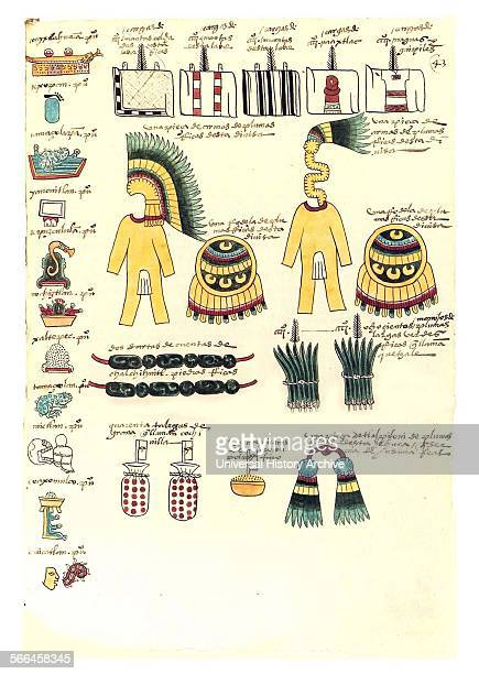 Folio from the Codex Mendoza The Codex Mendoza is an Aztec codex created about twenty years after the Spanish conquest of Mexico with the intent that...