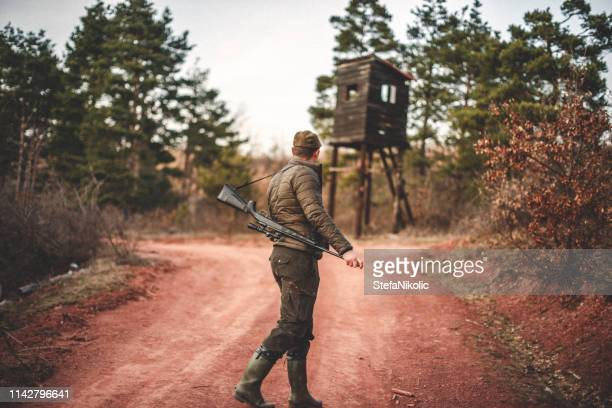follow me - rifle stock pictures, royalty-free photos & images