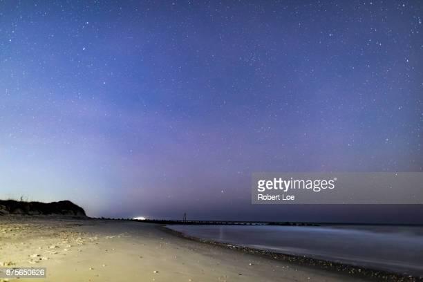 Folly Beach Stars