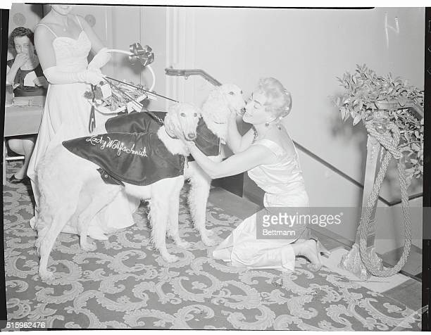 Fondling a pair of Russian wolfhounds at the Ninth Annual Animal Kingdom Ball is chairman Joan Crawford Mrs Alfred Steele as festivities get under...