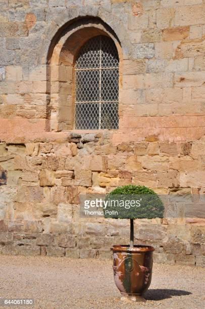Fontfroide Abbey boxwood and window