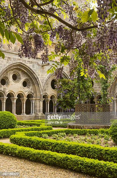 Fontfroide Abbey, cloister with wisteria