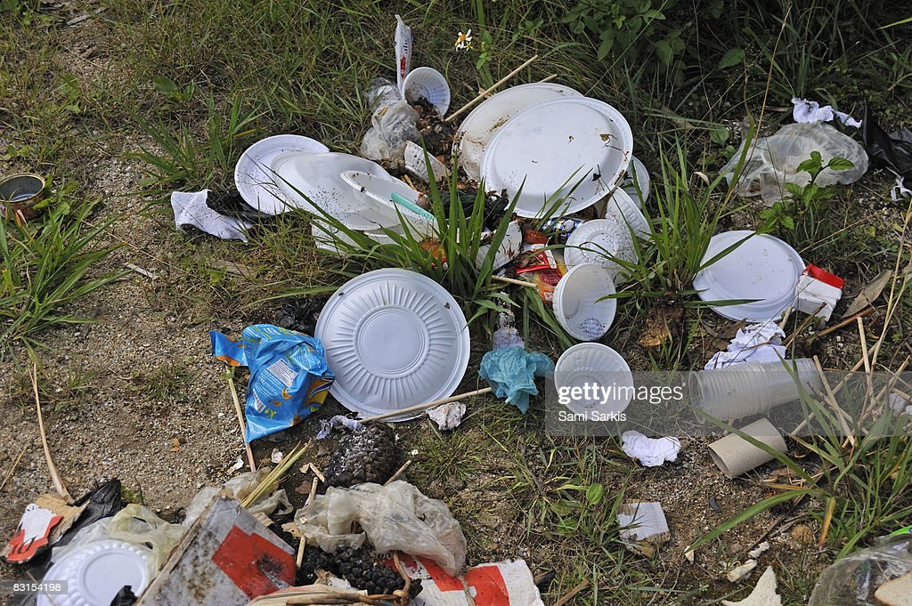 Food and plastic rubbish on grass : Stock Photo