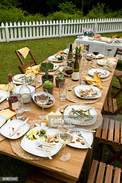 Food at outdoor dinner party in countryside