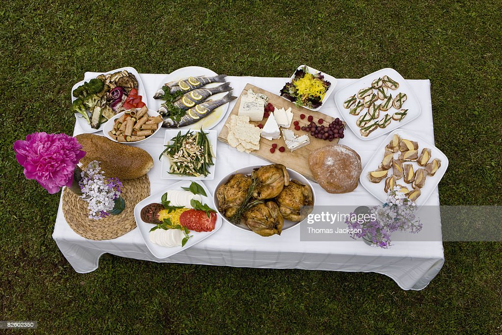 Food at outdoor dinner party in countryside : Stock Photo
