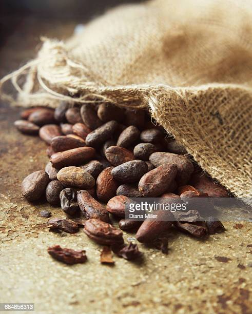 Food, cocoa beans and sack