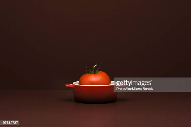 Food concept, fresh tomato in miniature pot