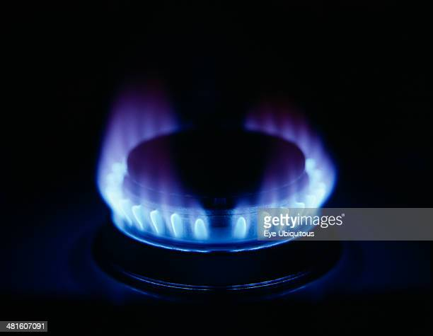 Food Cooking Blue flame on gas cooker ring