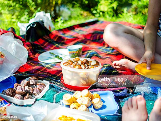 Food In Containers On Picnic Blanket