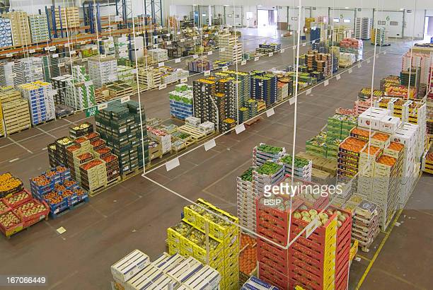 Food industry, Refrigerating warehouse of a fruits and vegetables wholesale dealer distribution center. Site of Avon in the industrial zone of...